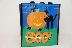 PP Non Woven Bag Laminated Small size 2