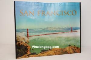 PP Non woven San Francisco Generic