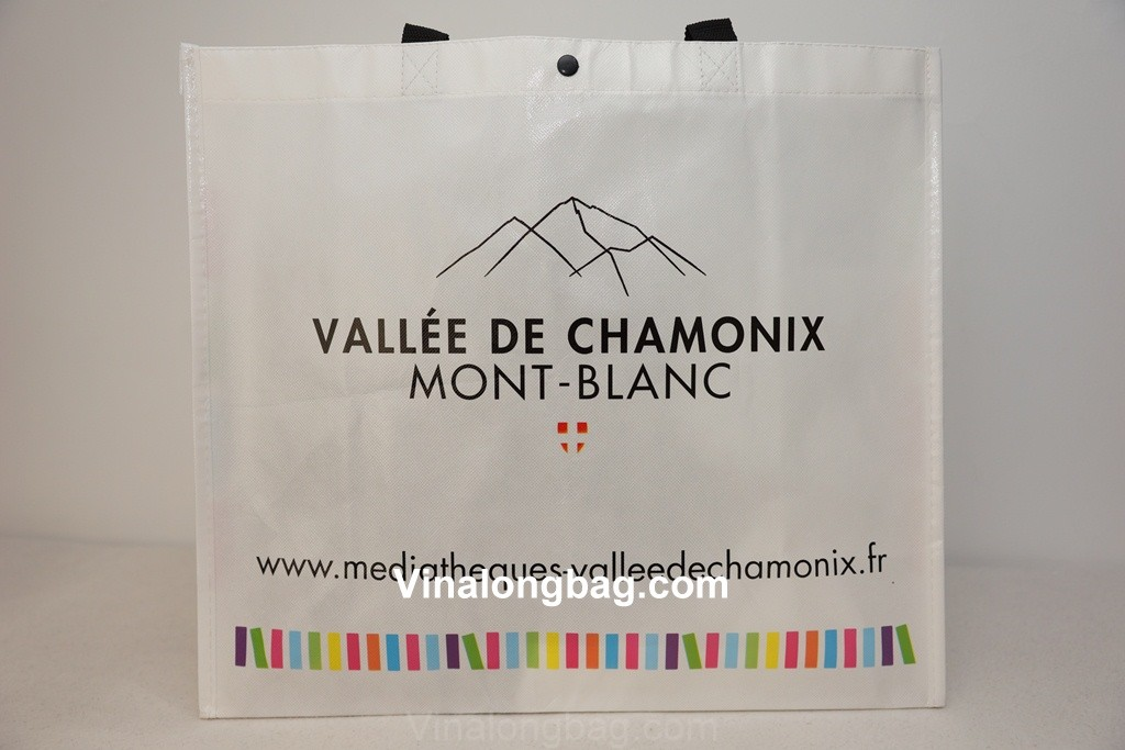 PP non woven bag with button on top